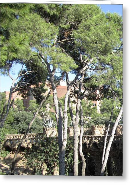 Park Guell Stone Pathway By Antoni Gaudi In Barcelona Spain Greeting Card by John Shiron