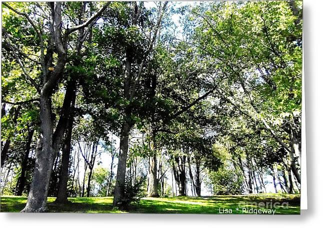 Park Trees Greeting Card by Lisa  Ridgeway