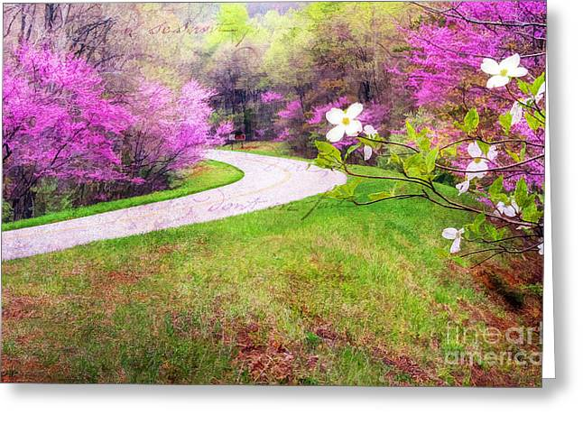 Parkway Kind Of Spring Greeting Card by Darren Fisher