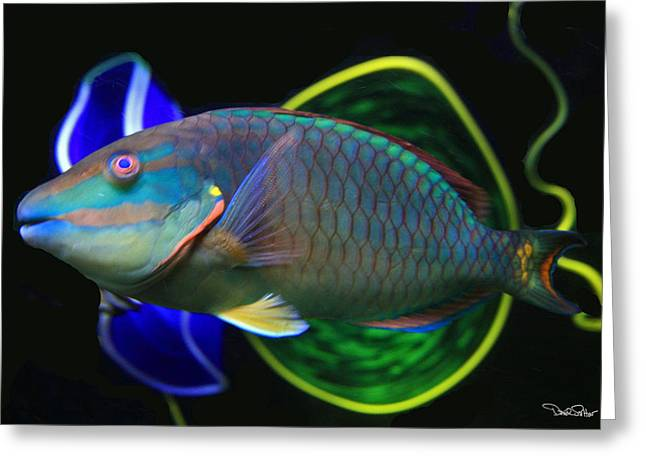 Parrot Fish With Glass Art Greeting Card by David Salter