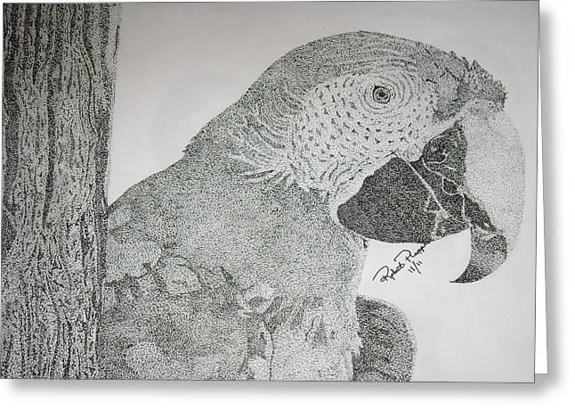 Parrot Greeting Card by Robert Plopper
