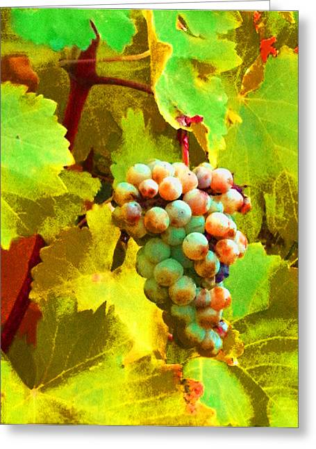 Paschke Grapes Greeting Card