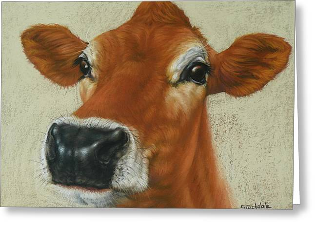 Pastel Cow Greeting Card by Margaret Stockdale
