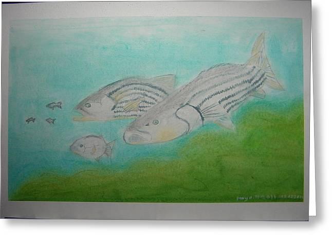 Pastel Fish Greeting Card by Maya M