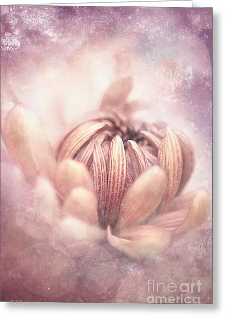 Pastel Flower Greeting Card by Lee-Anne Rafferty-Evans