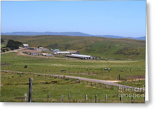 Pastoral Landscape Of Point Reyes California . 7d15958 Greeting Card
