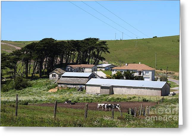 Pastoral Landscape Of Point Reyes California . 7d16047 Greeting Card