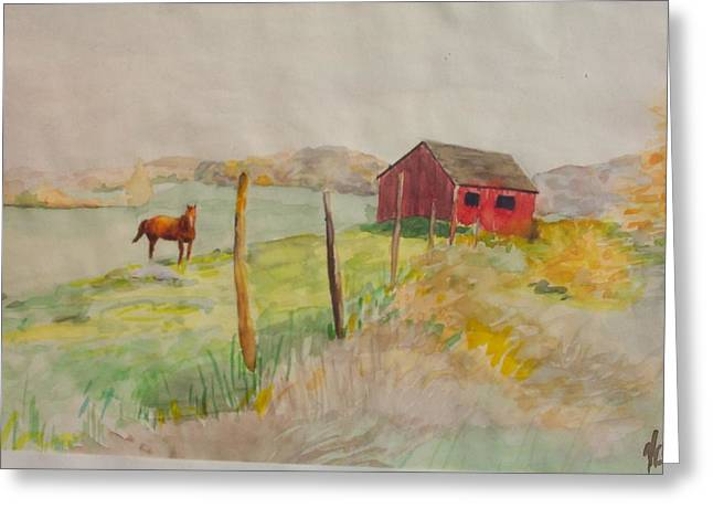 Pasture In Lagrangeville Greeting Card