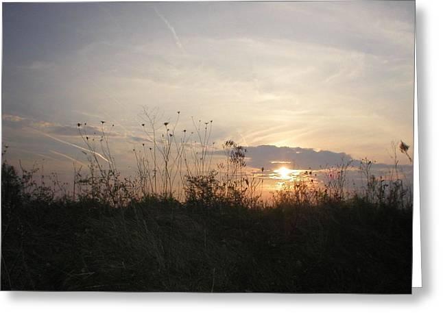 Pasture Sunset Greeting Card