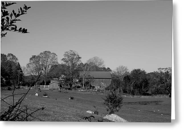 Pastures And Farm Greeting Card by Kim Galluzzo Wozniak
