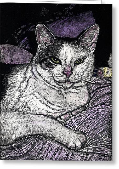 Patches The Cat Greeting Card by Robert Goudreau