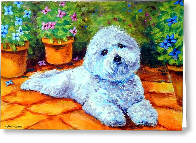 Patio Pal - Bichon Frise Greeting Card by Lyn Cook
