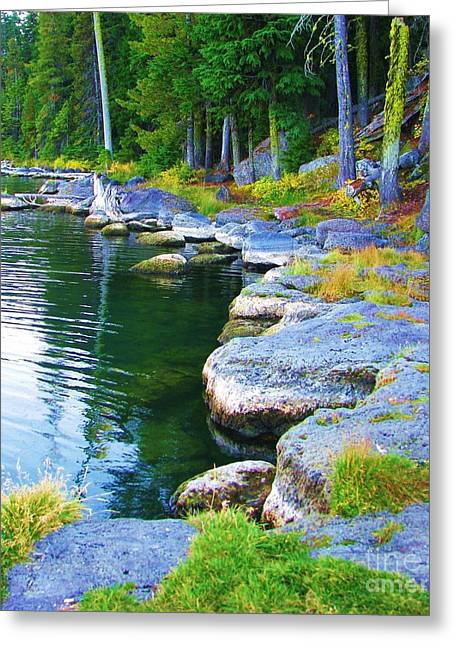 Greeting Card featuring the photograph Paulina Lake Shore by Michele Penner
