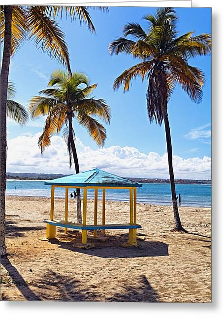 Pavilion On A Beach In Arecibo Greeting Card by George Oze