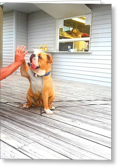 Paws Up Greeting Card