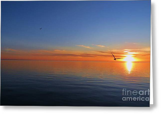 Peace Of The Sea  Greeting Card
