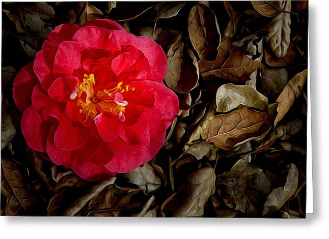 Peaceful Camellia Greeting Card by Bobbi Feasel