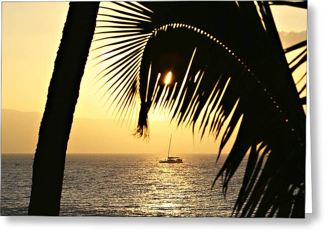 Peaceful Evenings Greeting Card by Marilyn Hunt