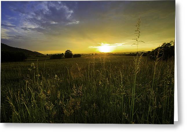Peaceful Field Greeting Card by A B Whiteman