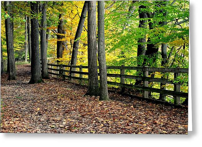 Peaceful Pathway Greeting Card by Frozen in Time Fine Art Photography