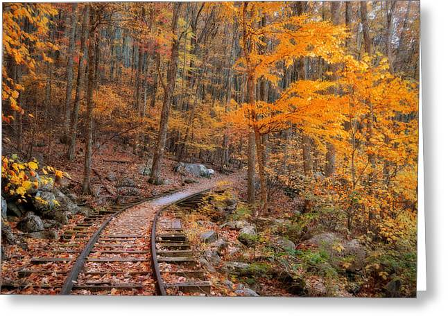 Peaceful Pathway Series 2 Greeting Card by Kathy Jennings