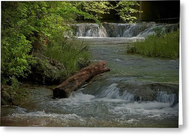 Peaceful Stream Greeting Card by Cindy Rubin