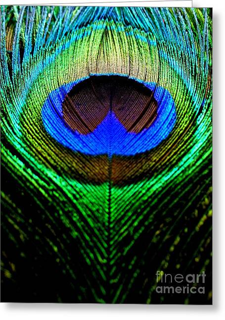 Peacock Greeting Card by Visithra Manikam
