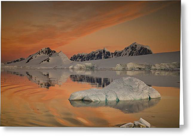 Peaks At Sunset Wiencke Island Greeting Card by Colin Monteath