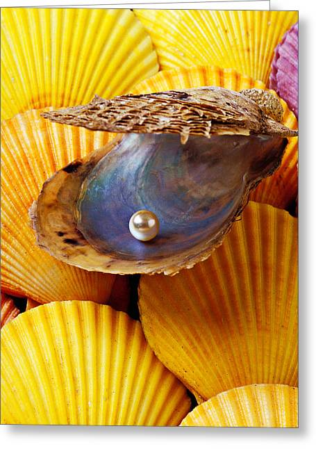Pearl In Oyster Shell Greeting Card