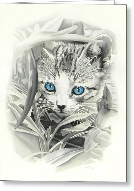 Peeking Kitten Greeting Card