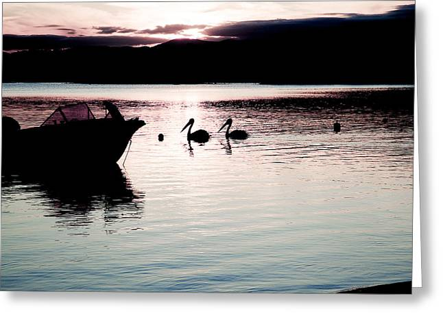 Greeting Card featuring the photograph Pelican Boat. by Carole Hinding