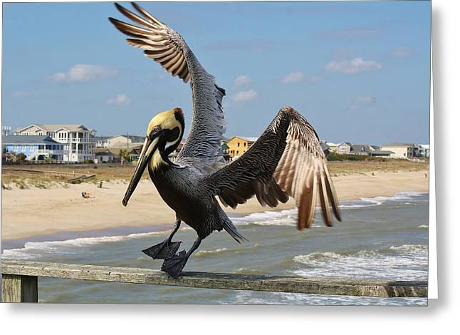 Pelican Landing On The Pier Greeting Card by Paulette Thomas