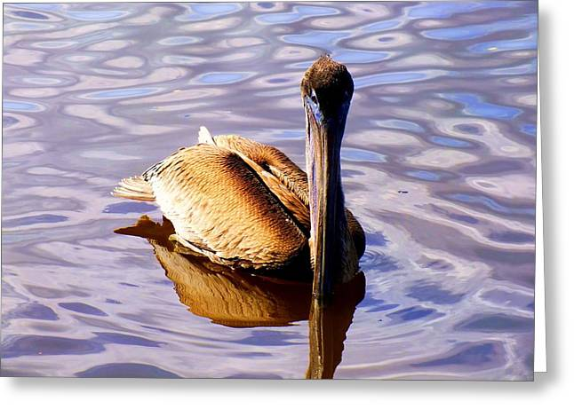 Pelican Puddles Greeting Card by Karen Wiles