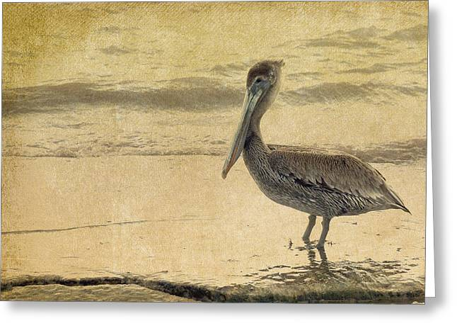 Pelican Greeting Card by Rebecca Cozart