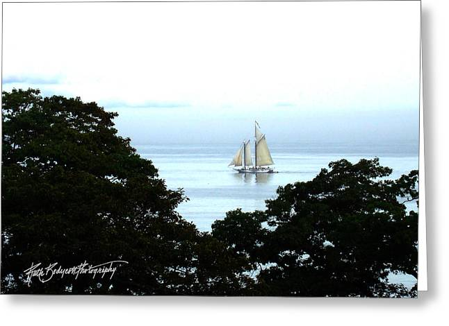 Penobscot Bay Sailing Greeting Card by Ruth Bodycott