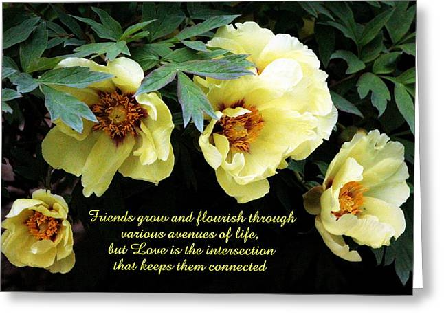 Peony Friends Greeting Card by Deborah  Crew-Johnson