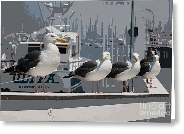 Perched Seagulls Greeting Card by Sonny Marcyan