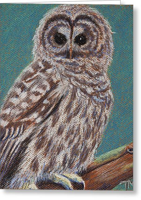 Perching Spotted Owl Greeting Card by Thomas Maynard
