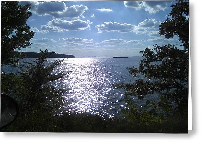 Perfect Pickwick Beauty Greeting Card by Dorothy S Guinn
