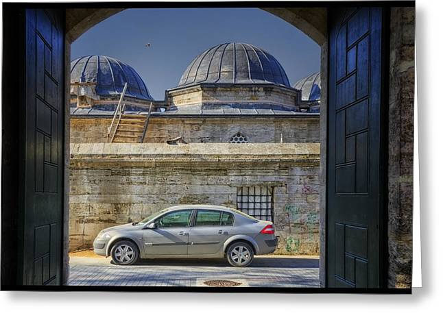 Perfect Placement Greeting Card by Joan Carroll