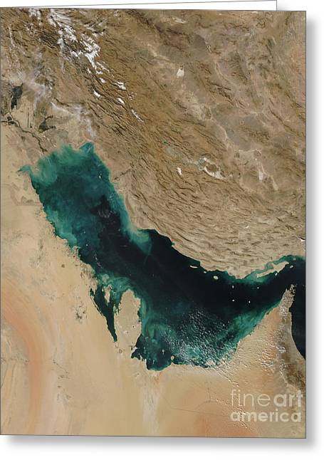 Persian Gulf Satellite Image Greeting Card by Nasa