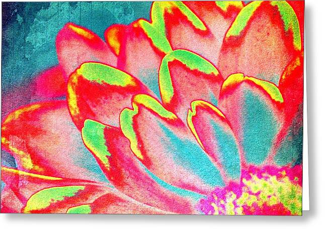 Petals Of Color Greeting Card by Cathie Tyler