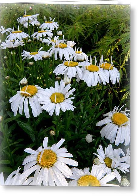 Petals Up Greeting Card by Tanya  Searcy