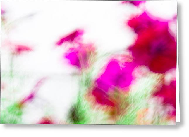 Petunias Greeting Card by Nancy Kennedy