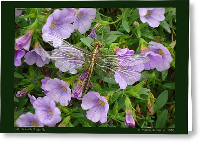Petunias With Dragonfly Greeting Card by Patricia Overmoyer