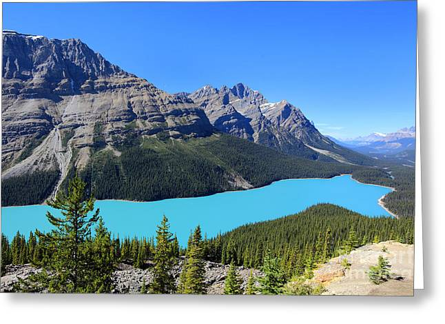 Peyto Lake Alberta Canada Greeting Card