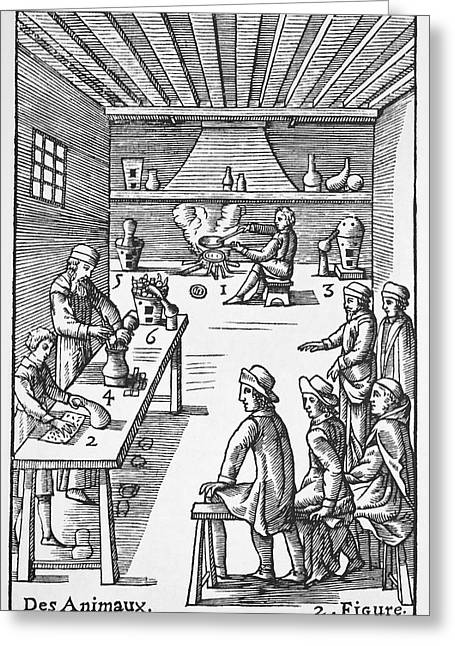 Pharmacy Preparations, 16th Century Greeting Card by