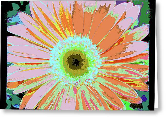 Photography Art Floral Greeting Card by Ricki Mountain