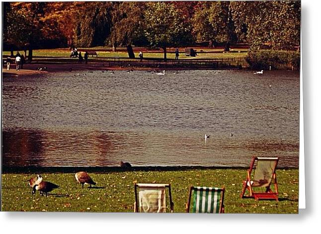 #photooftheday #london #regentspark Greeting Card