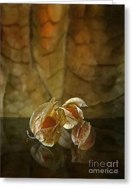 Greeting Card featuring the digital art Physalis by Johnny Hildingsson